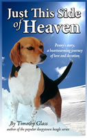 Buy Just This Side of Heaven by Timothy Glass